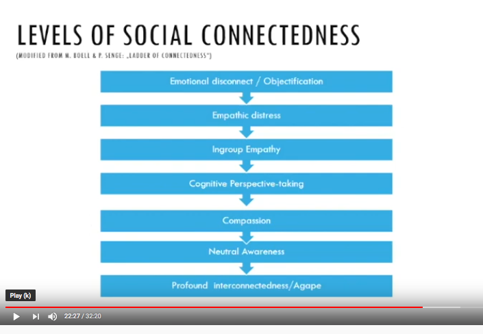 Levels of social connectedness IFGIC